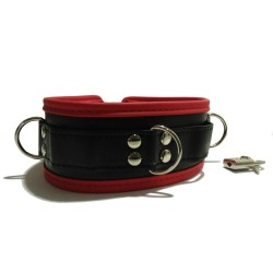 Leather Collar 537